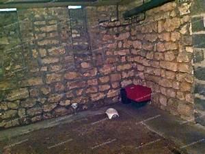 Ventilation Naturelle D Une Cave : assainir une cave conseils forum ~ Premium-room.com Idées de Décoration