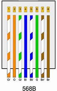 Cat 5 Home Networking Wiring Diagram : paths fiber optics cat5e cat6 plenum rated cable lock ~ A.2002-acura-tl-radio.info Haus und Dekorationen