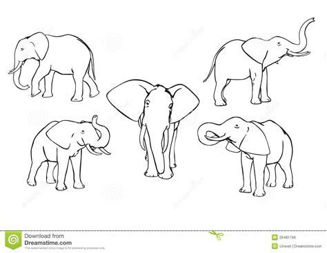 elephant clipart outline trunk up elephants royalty free stock image image 26481766
