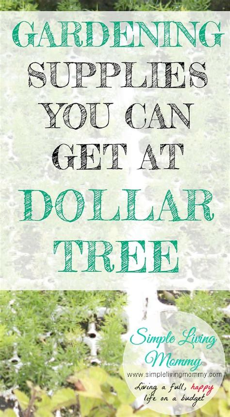 gardening supplies you can get at dollar tree trees