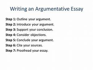 Writing A Literature Essay Self Assessment Essays Sample Nursing  Writing A Causal Analysis Essay Sample Synthesis Essays also Grant Writers Grant Writing Service  Into The Wild Essay Thesis