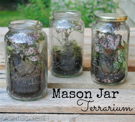 what to make with a jar diy mason jar terrarium jenna burger