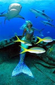 Under the Sea With Real Life Mermaid Hannah Fraser This ...