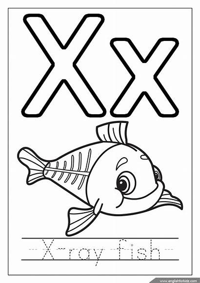 Coloring Alphabet Ray Letters Fish Letter English