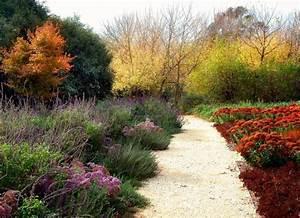 Drought tolerant garden design by eckersley garden for Drought resistant gardens