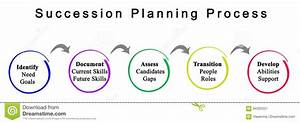 Succession Planning Stock Images
