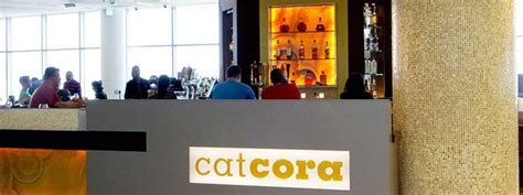 cat cora kitchen the best bars at the 10 busiest airports in america vinepair