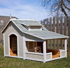 Niche Pour Chien Avec Terrasse : niche chien avec terrasse pour mon chien pinterest ~ Dailycaller-alerts.com Idées de Décoration
