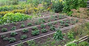 Gemüsegarten Anlegen Beispiele : anbauplanung im gem segarten mein sch ner garten ~ Watch28wear.com Haus und Dekorationen