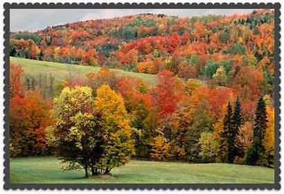 Autumn Vermont Scene Tunbridge Vt Scenes Fall