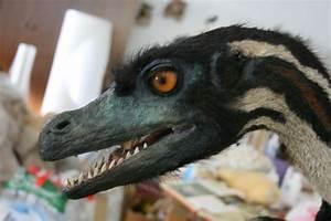 10 Facts About Velociraptors  Velociraptor