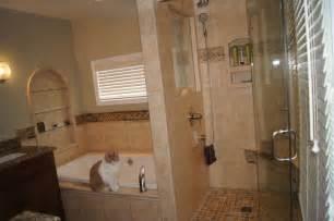 Great Bathroom Remodel Ideas