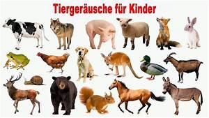 Tiere Für Kinder : tierger usche f r kinder 30 tiere lernen f r kleinkinder ~ Lizthompson.info Haus und Dekorationen