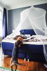 Dreamolino Kissen Test : dunkelblaues schlafzimmer ikea schlafzimmer prospekt bettw sche wintermotiv wandfarbe schlamm ~ Eleganceandgraceweddings.com Haus und Dekorationen