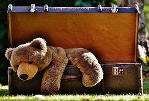 Welches Vogelhaus Ist Am Besten : riesen teddyb r welches alter ist am besten ~ A.2002-acura-tl-radio.info Haus und Dekorationen