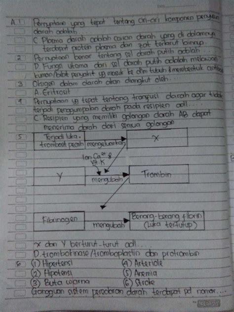 Soal pts bahasa indonesia kelas 7 smp/mts semester 1 (ganjil) berdasar kurikulum 2013 edisi revisi 2017. Jawaban Ipa Kelas 7 Halaman 143 - Guru Ilmu Sosial
