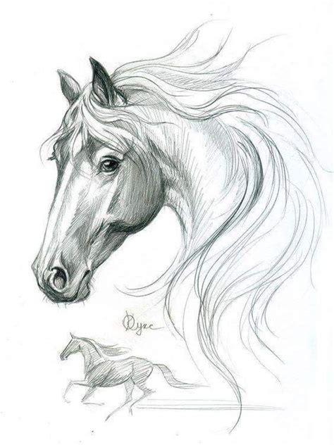 pin van alice caig op sketches  horses