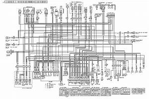 Honda Crf250l Wiring Diagram  58974