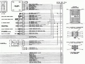 9 Dodge Dakota Ecm Wiring Diagram