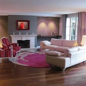 Salon Gris Et Rose : salon rose gris ~ Preciouscoupons.com Idées de Décoration
