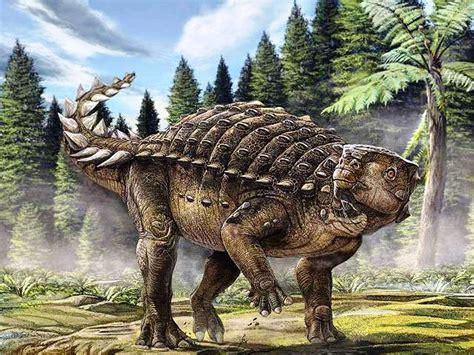 Dinosaure Un Nouvel Ankylosaure Identifi En Australie