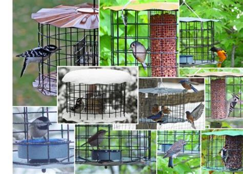 starling proof feeders nature house catalog