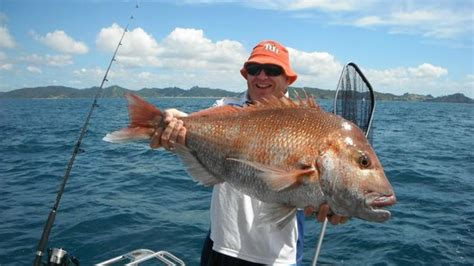 Legend Boats Perth by Legend Charters Day Trips New Zealand Top