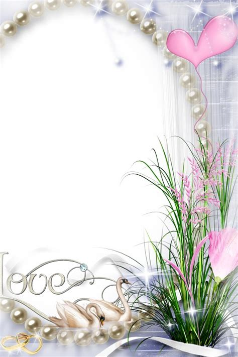 wedding frame transparent png pictures  icons