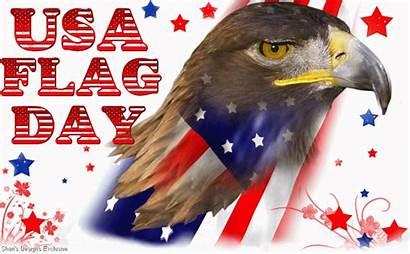Flag Eagle Usa Happy Face Glitter Greeting