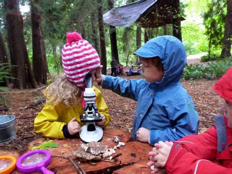 nature preschool uw botanic gardens 296 | microscopesupport(small)