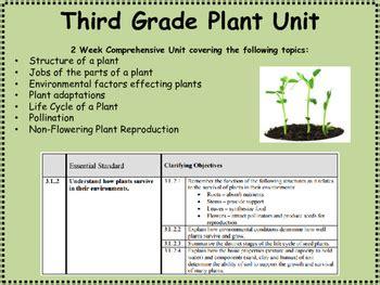 grade plant unit  rachel harris teachers pay