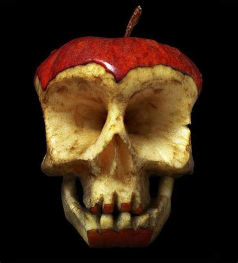 Dimitri Tsykalov Fruit Skulls Faux Magazine
