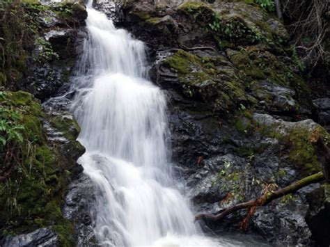 Top Marin County Waterfall Hikes Mill Valley Patch