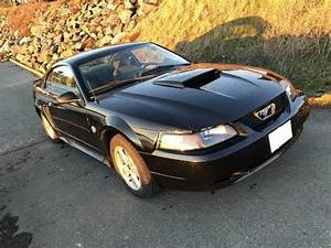 2004 Ford Mustang 40th Anniversary Edition V6 106,000km Victoria City, Victoria