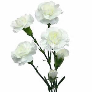 yellow calla mini carnations white