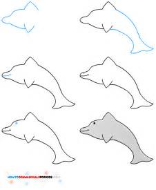 How to Draw Dolphin Kids