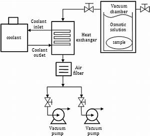 Schematic Diagram Of The Vacuum System