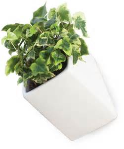the wall wall flowerpot large d 11 5 cm white by thelermont hupton