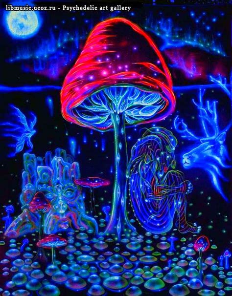 i ve seen one of these forests mojo shroomieeee