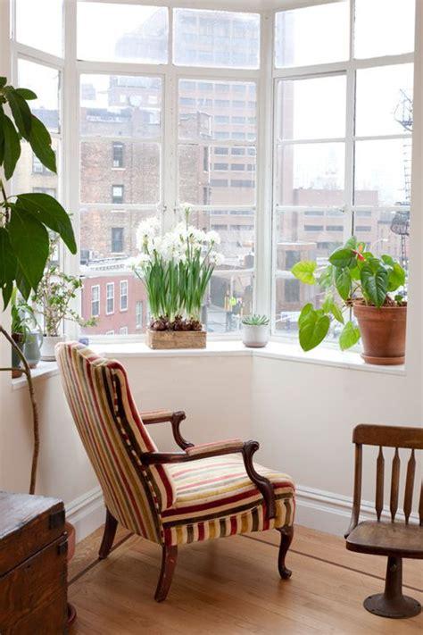 Best Indoor Window Sill Plants by Sneak Peek Best Of Indoor Plants A Window Sill