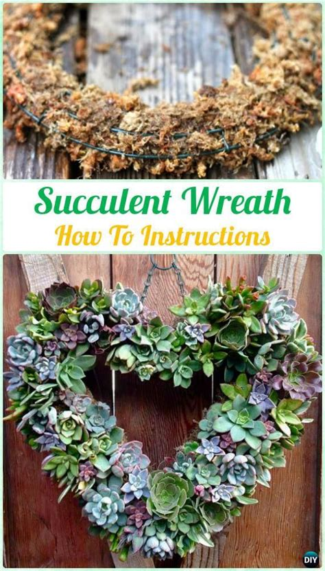 17 best ideas about hanging succulents on