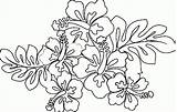 Hawaiian Coloring Flower Pages Printable Lei Flowers Themed Drawing Luau Sheets Blank Hawaii Drawings Leaf Getcolorings Leaves Getdrawings Taro Party sketch template