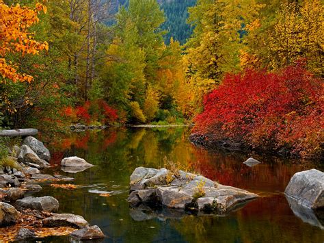 Amazing Animated Wallpapers - fall images wallpaper wallpapersafari