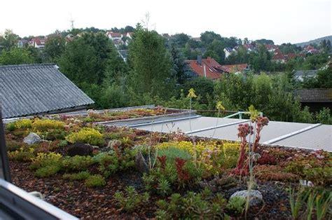Blüm Garten Und Ideen Zella Mehlis by Bl 252 M Garten Ideen Zella Mehlis Bl 252 M Garten Ideen