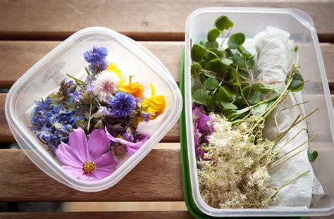 les fleurs comestibles en cuisine les fleurs comestibles pour une cuisine colorée et pleine
