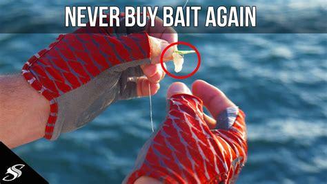 fishing pier bait catch