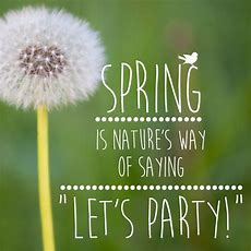 "Quote Spring Is Natures Way Of Saying ""let's Party!""  Bird Word  Pinterest  Nature, Spring"