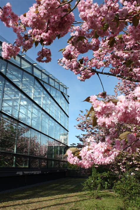 Botanischer Garten Rostock