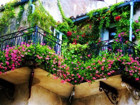 Balkon Bepflanzen Tipps balkon bepflanzen praktische tipps und wichtige hinweise