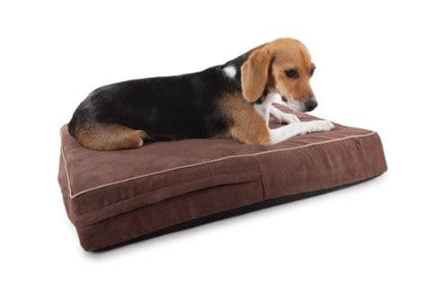 orthopedic 4 pound memory foam dog beds washable suede
